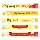 Grupo de moldes abstratos da bandeira da Web com fundo floral Bandeiras da venda grande e da oferta especial Bandeiras longas do  ilustração stock