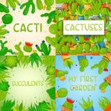 Grupo de 4 moldes quadrados da bandeira com cactos e plantas carnudas Plantas home do cacto com formigamentos e flores exotic ilustração do vetor