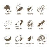 Grupo de monochrome, ícones do alimento do lineart: porcas Imagem de Stock