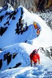 Grupo de montanhistas que alcançam a cimeira Fotos de Stock Royalty Free