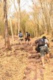 Grupo de mountine subida de passeio de Phu Kradueng dos turistas Curso foto de stock