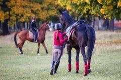 Grupo de muchachas del jinete que caminan con los caballos en parque Imagen de archivo libre de regalías
