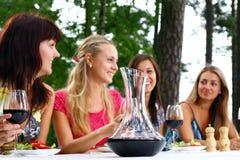 Grupo de muchachas hermosas que beben el vino Fotografía de archivo