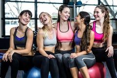 Grupo de mujer del ajuste que sonríe mientras que se sienta en bolas del ejercicio Fotos de archivo libres de regalías