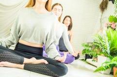 Grupo de mujeres hermosas en las clases de la yoga y de la meditaci?n para restaurar la mente y el alcohol, con el concepto de re imagenes de archivo
