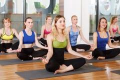 Grupo de mujeres jovenes en clase de la yoga Fotografía de archivo libre de regalías