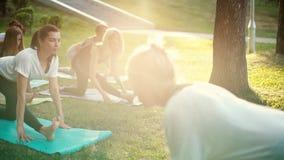 Grupo de mujeres jovenes que estiran la sesión del entrenamiento de las piernas sobre la estera de la yoga en parque metrajes