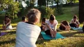 Grupo de mujeres jovenes que estiran sus piernas en la estera de la yoga en parque el verano almacen de metraje de vídeo