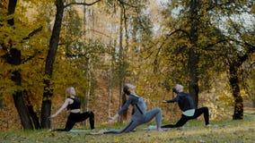 Grupo de mujeres jovenes que hacen el ejercicio de la acción de la yoga sano en el parque Concepto de la forma de vida de la salu almacen de video