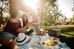 Grupo de mujeres que comen cervezas en el parque fotos de archivo