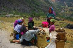 Grupo de mulheres brancas de Hmong na pausa para o almoço Fotos de Stock