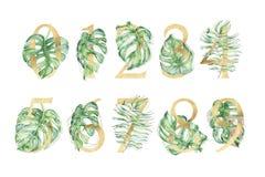 Grupo de números tropical dourado com ilustrações verdes das folhas imagens de stock