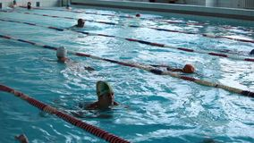 Grupo de nadadas das mulheres na associação video estoque