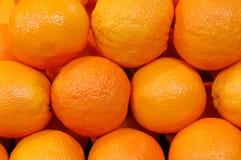 Grupo de naranja Foto de archivo libre de regalías