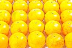 Grupo de naranja Imágenes de archivo libres de regalías