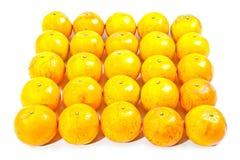 Grupo de naranja Foto de archivo