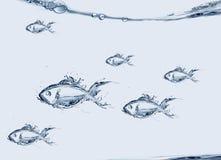Grupo de natación de los pescados del agua foto de archivo