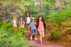 Grupo de niños que caminan y que caminan en el bosque imagen de archivo libre de regalías