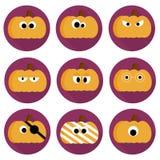 Grupo de nove abóboras lisas Fotografia de Stock