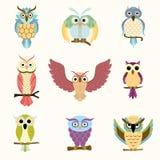 Grupo de nove corujas coloridas dos desenhos animados Foto de Stock Royalty Free