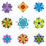 Grupo de nove elementos florais simétricos Fotos de Stock Royalty Free