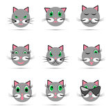 Grupo de nove sorrisos do gato ilustração do vetor