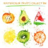 Grupo de objetos da aquarela do fruto fresco Maçã, citrinos, abacate e qiwi de Watercolored em uma coleção de arte com Imagens de Stock Royalty Free