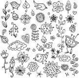 Grupo de objetos do contorno dos pássaros, das flores, das folhas e dos galhos para um teste padrão ou um cartão bonito ilustração do vetor