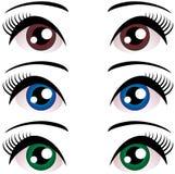 Grupo de olhos das mulheres com pestanas longas Azul, marrom, verde Vetor Imagens de Stock