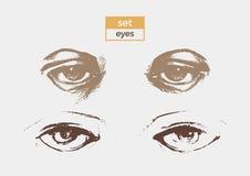 Grupo de olhos diferentes com o desenho detalhado dos alunos e das sobrancelhas Esboço do vetor Fotos de Stock