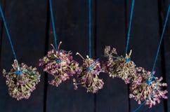 Grupo de oréganos secos Foto de Stock Royalty Free