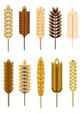 Grupo de orelhas do cereal Imagem de Stock