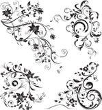 Grupo de ornamento florais isolados no branco ilustração do vetor