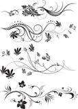 Grupo de ornamento florais isolados no branco ilustração stock