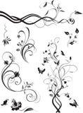 Grupo de ornamento florais isolados no branco ilustração royalty free