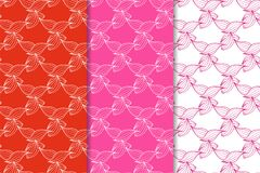 Grupo de ornamento florais Testes padrões sem emenda fúcsia vermelhos Imagem de Stock Royalty Free
