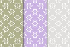Grupo de ornamento florais Testes padrões sem emenda verticais coloridos Fotografia de Stock Royalty Free