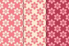 Grupo de ornamento florais vermelhos Testes padrões sem emenda verticais cor-de-rosa da cereja Foto de Stock Royalty Free