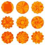 Grupo de ornamento geométricos do círculo Vetor Fotografia de Stock Royalty Free