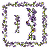 Grupo de ornamento - mão decorativa beira e quadro florais tirados Imagem de Stock