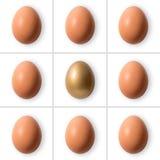 Grupo de ovos com ovo do ouro imagens de stock royalty free
