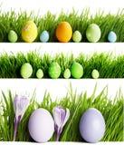 Grupo de ovos da páscoa na grama Foto de Stock Royalty Free