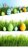 Grupo de ovos da páscoa na grama Imagem de Stock
