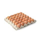 Grupo de ovos frescos no isolado da bandeja do pater no fundo branco Imagens de Stock