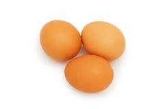 Grupo de ovos isolados no branco Fotografia de Stock Royalty Free