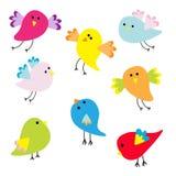 Grupo de pássaros bonitos dos desenhos animados Fotos de Stock Royalty Free