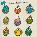 Grupo de 9 pássaros engraçados dos desenhos animados. Imagens de Stock