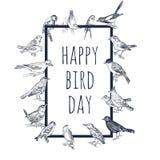Grupo de pássaros tirados mão Passerine ilustração stock