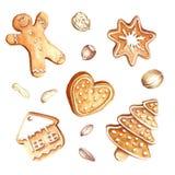 Grupo de pão-de-espécie e de porcas Natal Ilustração da aquarela da tração da mão Fotografia de Stock