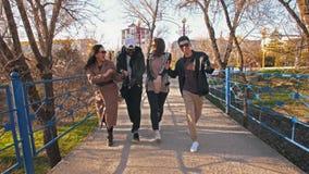 Grupo de passeio multi-étnico dos amigos video estoque